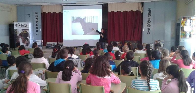 Almendralejo school visits - galgo education