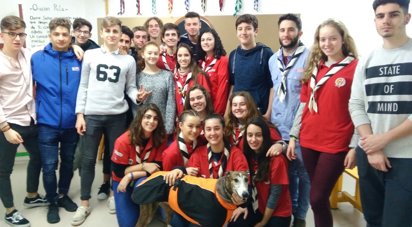 Scout group - galgo education