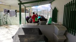 Arca de Noe shelter visits