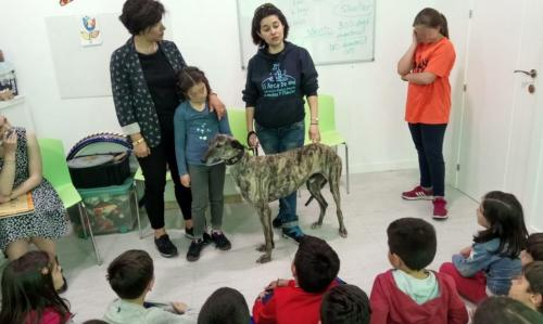 Nessie - English Academy visit