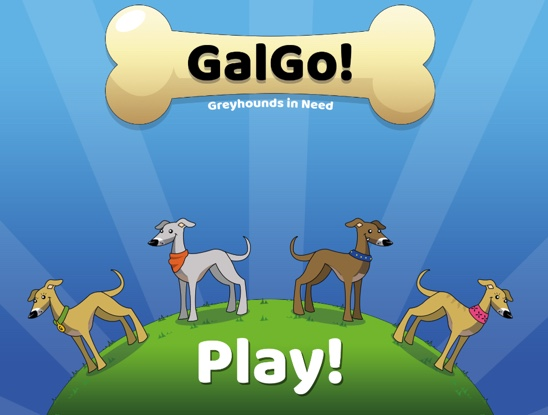 galgo education