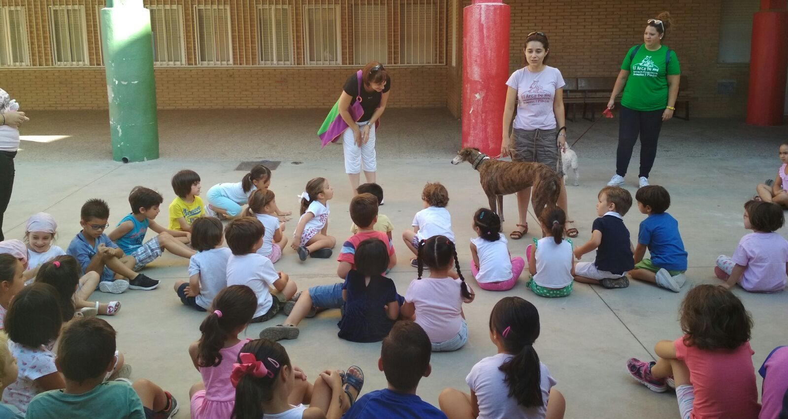 Albacete summer school - Meeting the galgos