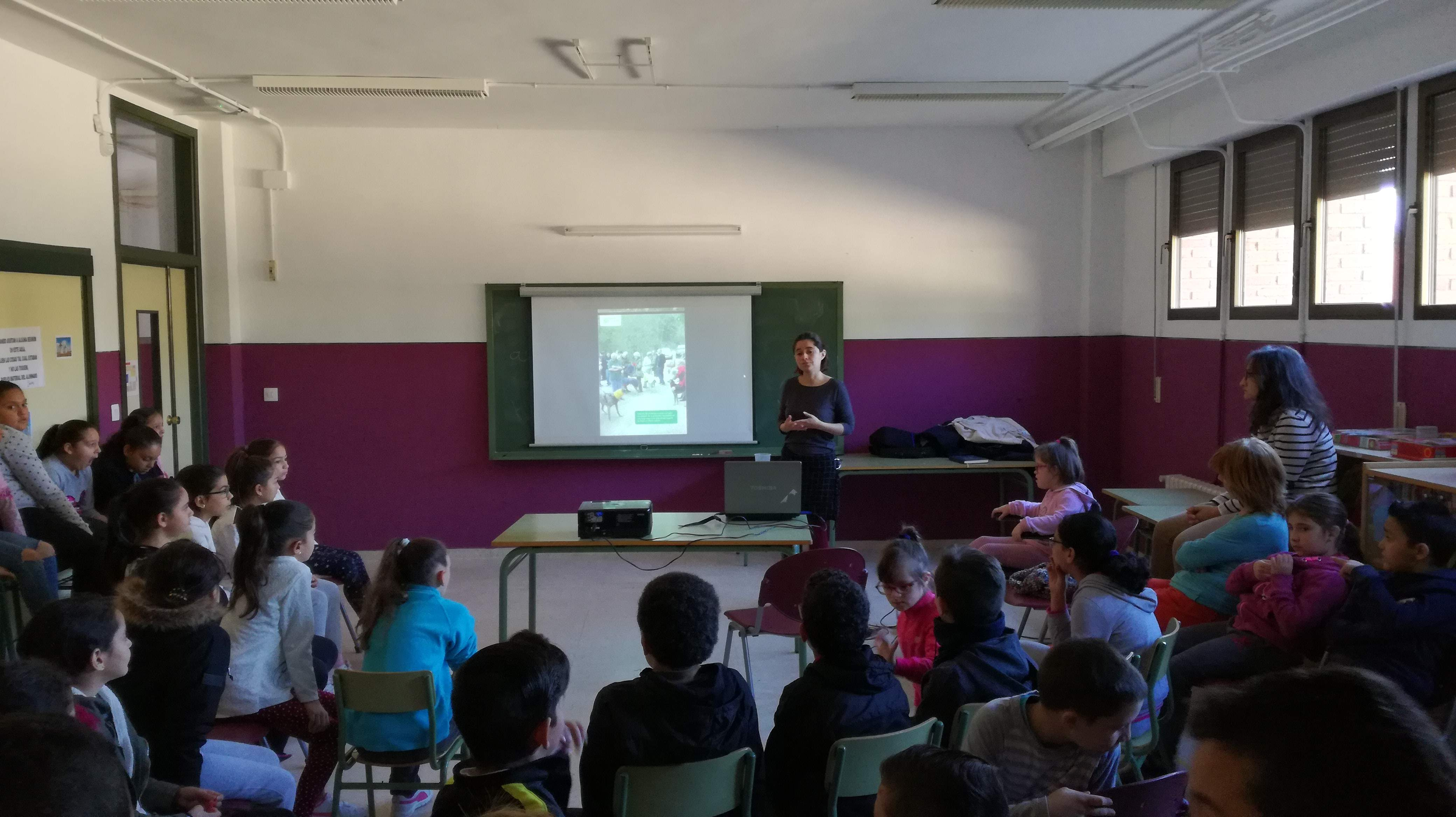 Visits to schools in La Roda and Elche de la Sierra - galgo education