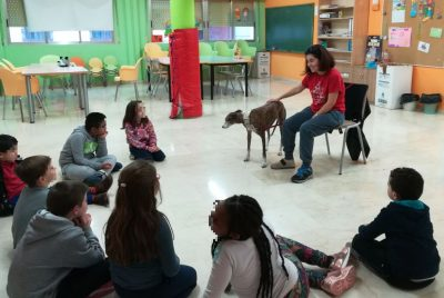 barrio Carretas (7) - galgo education
