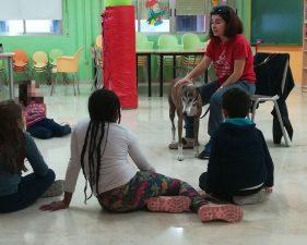 barrio Carretas (7) - galgo education