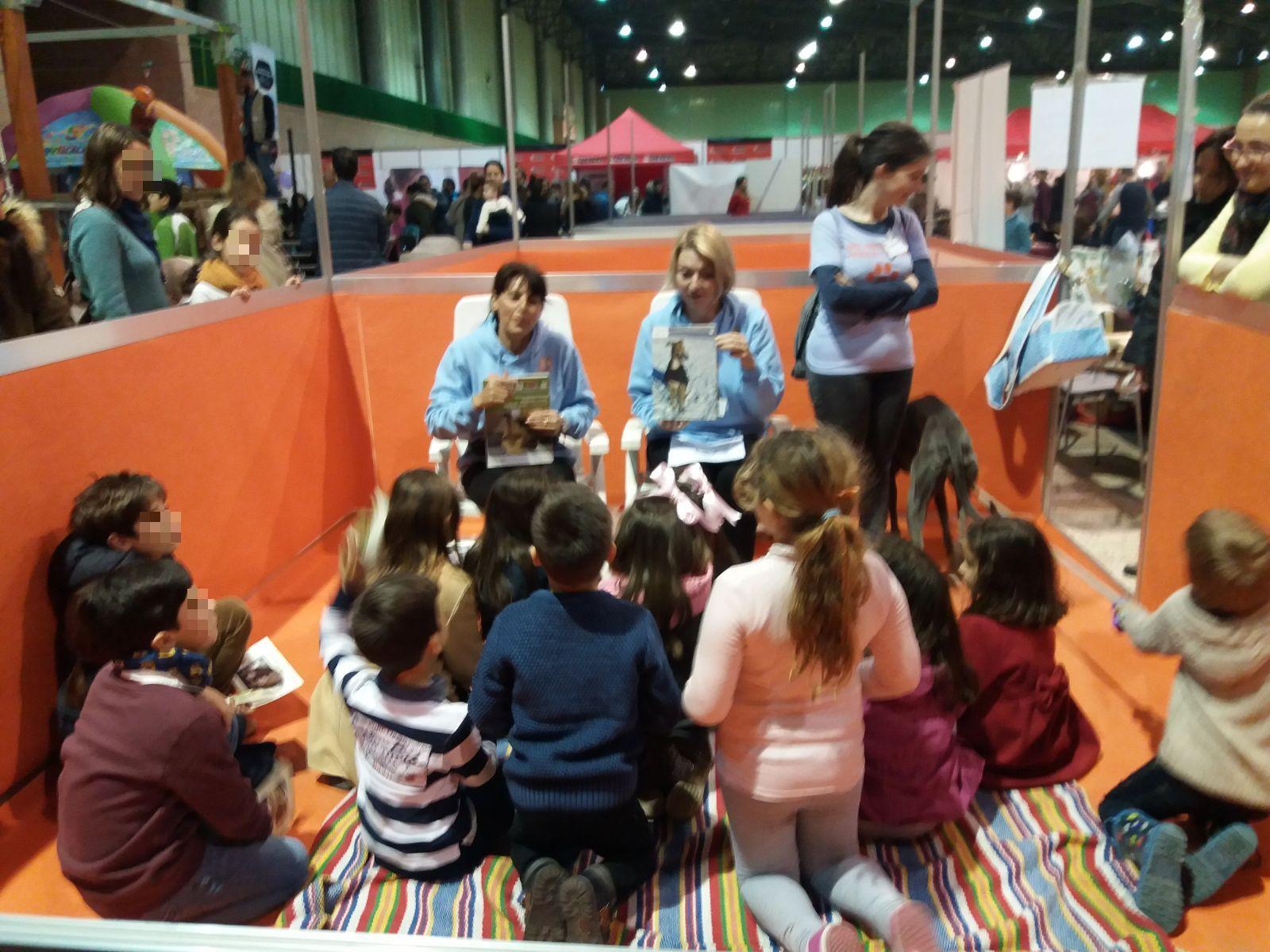 Asociación Protectora de Animales y Plantas de Ayamonte - galgo education