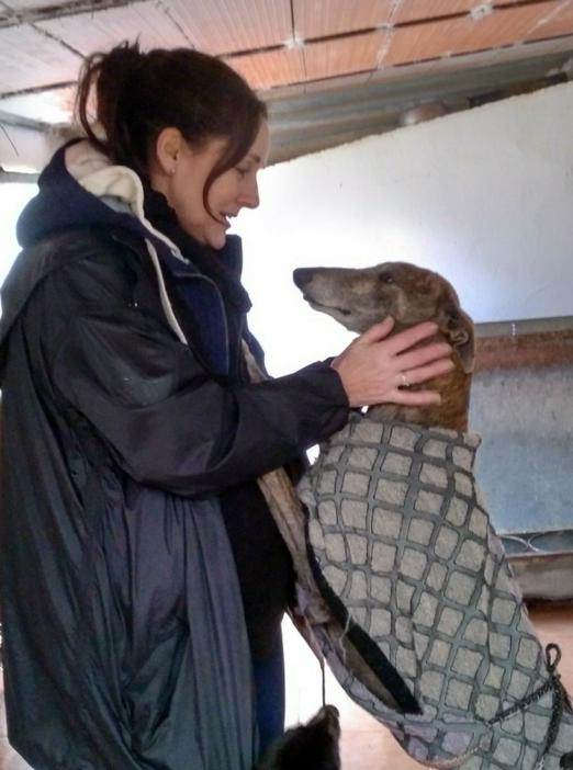 Tracey makes a new galgo friend