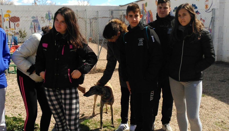 Aristos school pupils visit Arca de Noe
