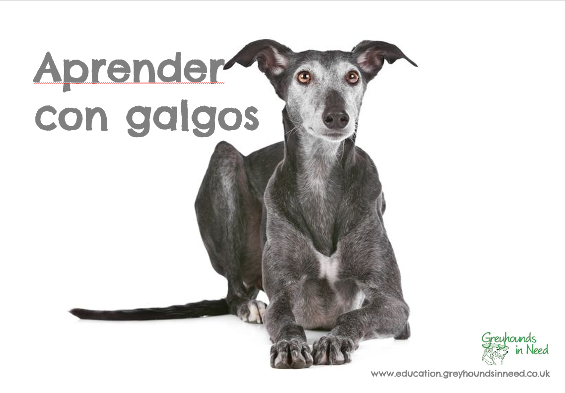 Learn with galgos