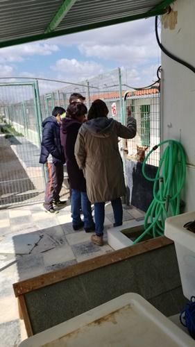 Arca de Noè shelter visits April 2019
