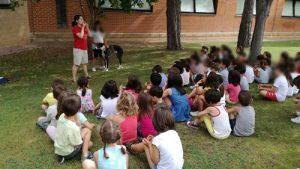 UCLM's summer school