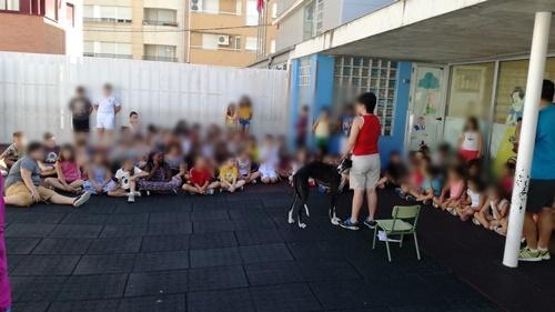 Cp Reina Sofía summer school