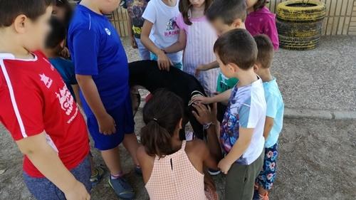 Santa Ana Summer School