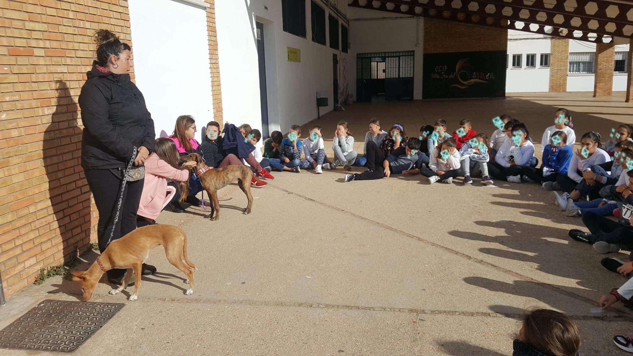 School visits by APAPA in Ayamonte