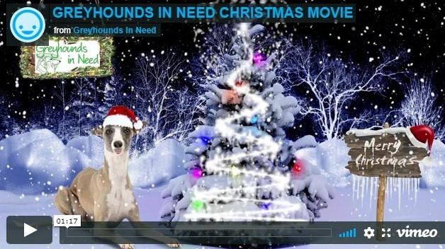 Greyhounds in Need Christmas video