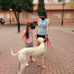 A young girl meets the rescue galgo