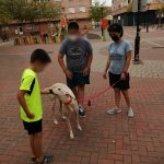 A child gives the galgo a chin rub