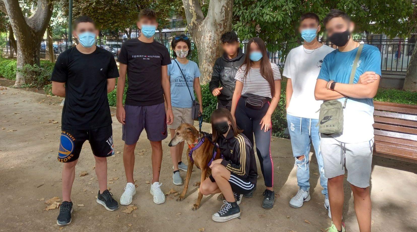 Yanis the galga visits a group of teenagers