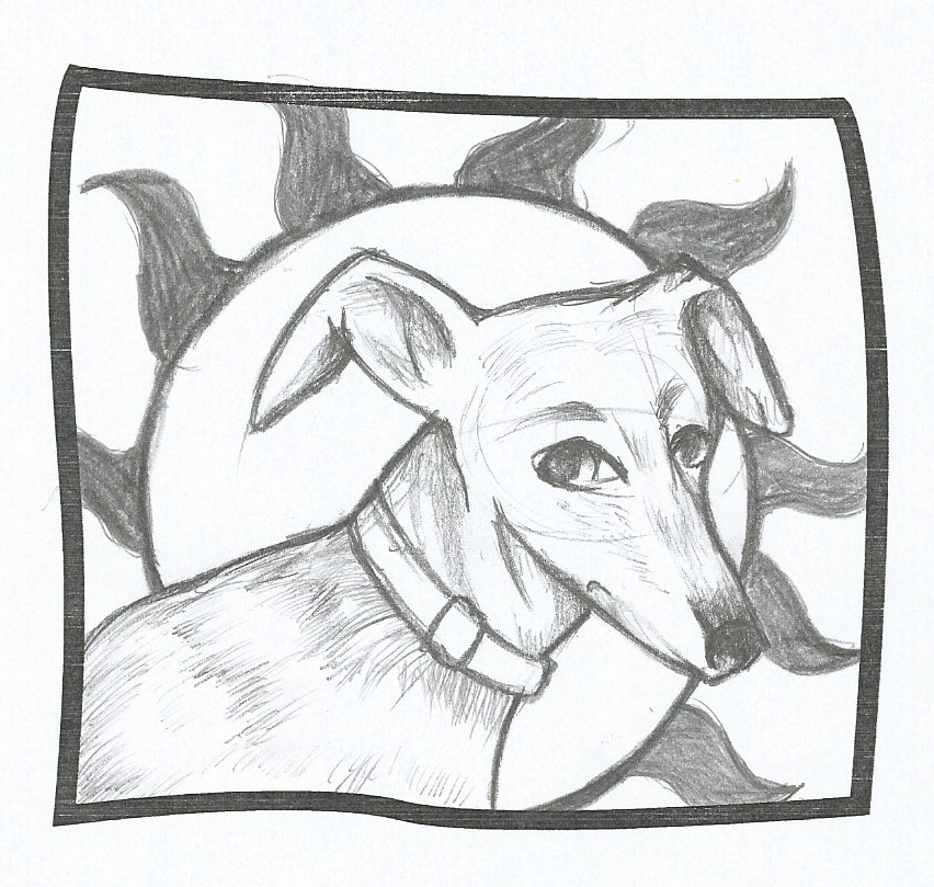 Ginny's galgo competition